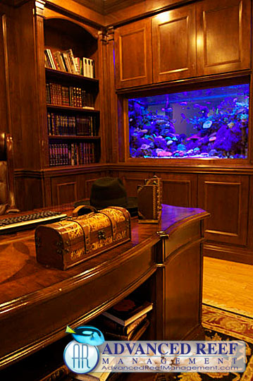 Custom Aquariums and Aquarium Cabinets For Your Home, Office Or Business